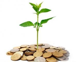 argent fertile 2