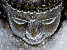 grozen buddha